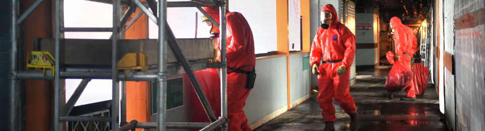 Asbestos Removal and Management